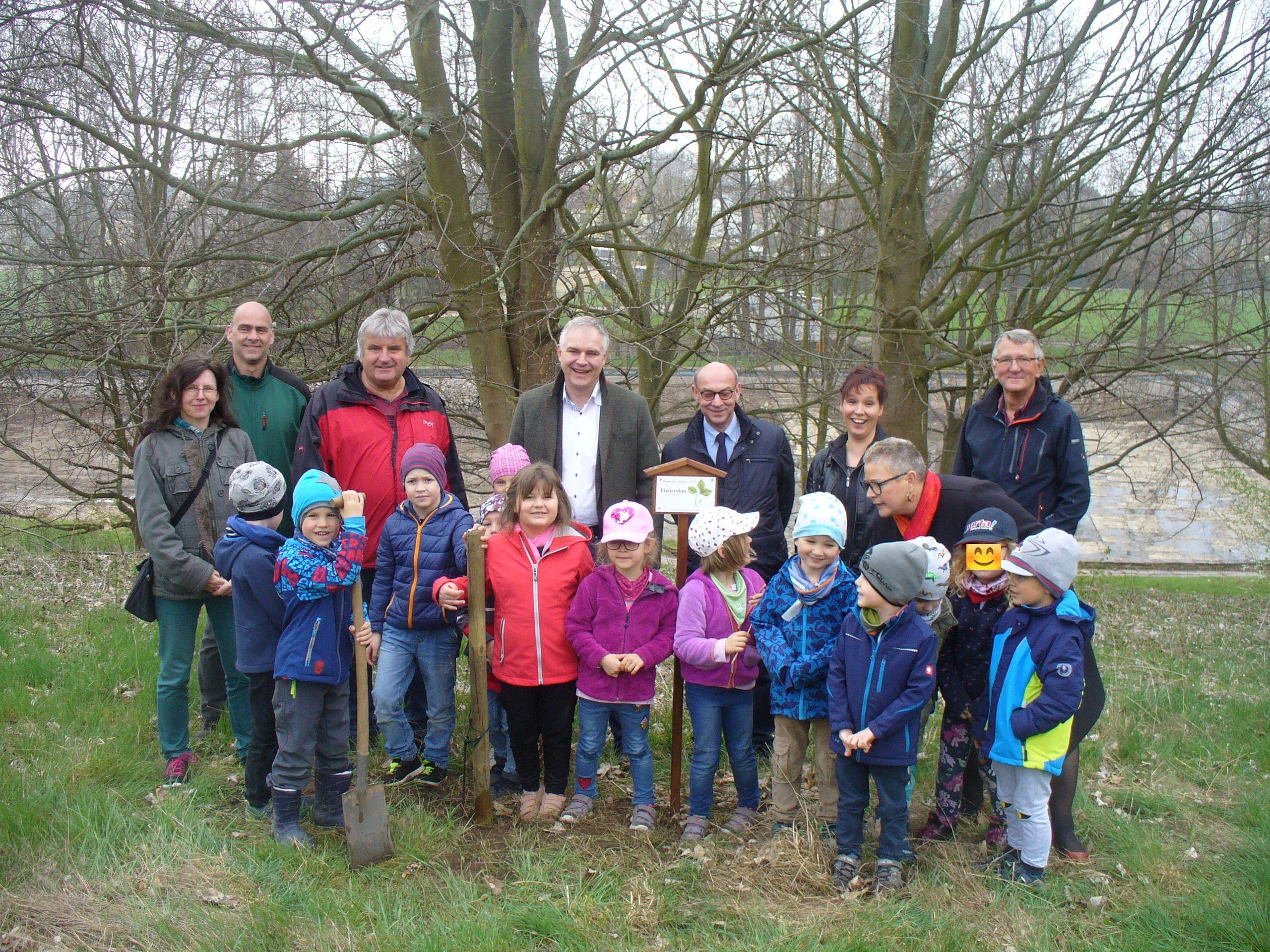 Baumpflanzung am Höckerberg kann weitergehen