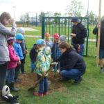 Klimaaktivisten pflanzen Winterlinde für Kita Burkartshain