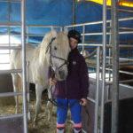 Circus Alexander kann vorerst in Wurzen bleiben