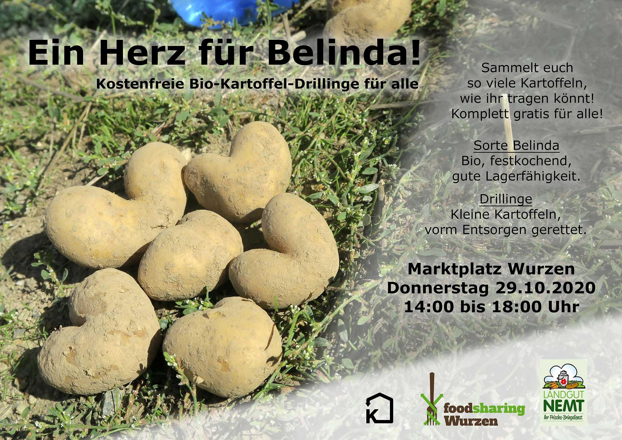Kanthaus-Bewohner verschenken Bio-Kartoffeln