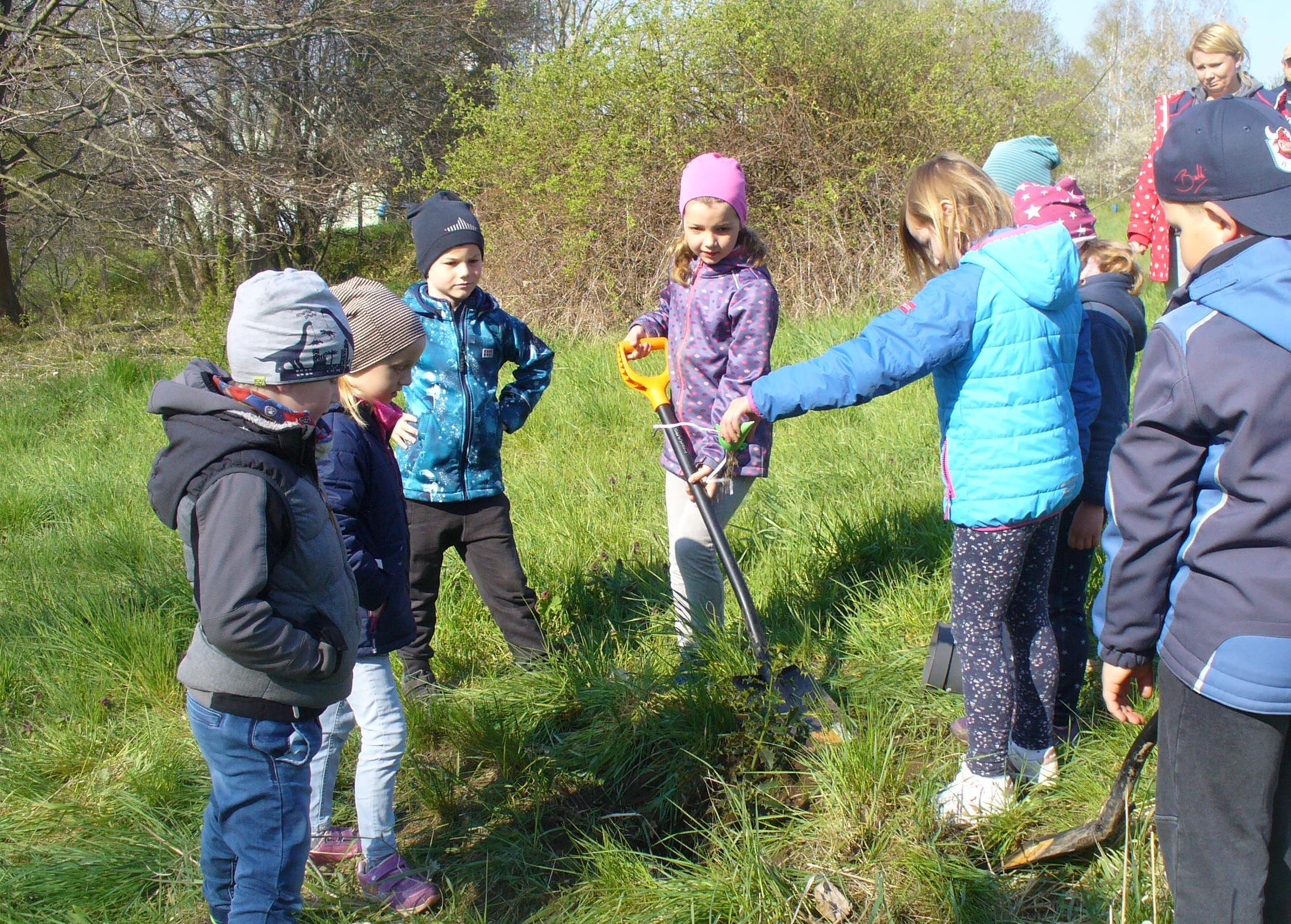 Rüsselchen-Kinder pflanzen Zauberstabbaum
